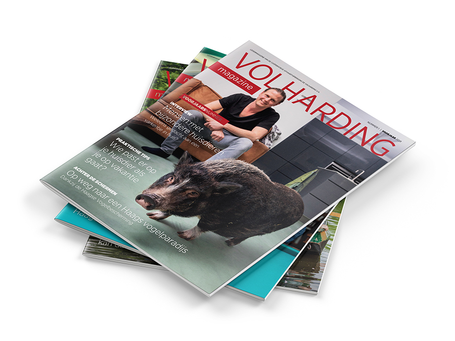 Volharding Magazine